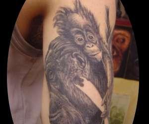 Mds - tatouages et piercing