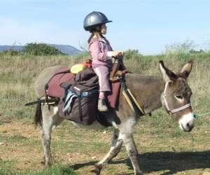 La ferme aux ânes de torderes