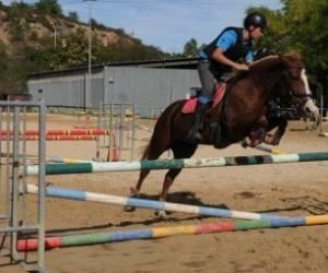 Centre equestre d