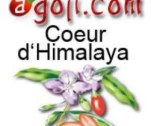 Vente goji seche, vente baies de goji super fruit