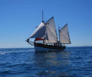 Balade en mer sur voilier traditionnel