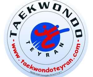 Taekwondo teyran