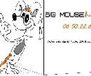 Societe big mouse informatique