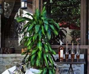 Restaurant italien la dolce vita