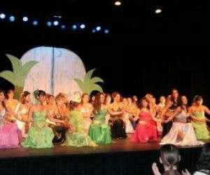 Free danse orientale / association roots orientale