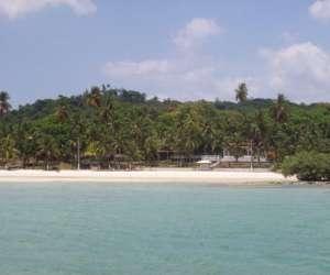 Visite  des  iles tropicale -  baie de salvador au bres