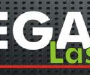 Megazone laser game