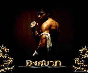 Muay thai montarnaud