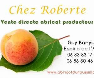 Vente abricots, confiture et nectar abricot producteur