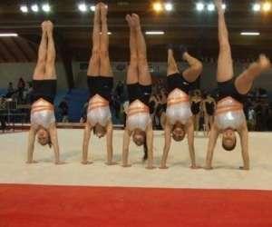 Association gymnique perpignanaise