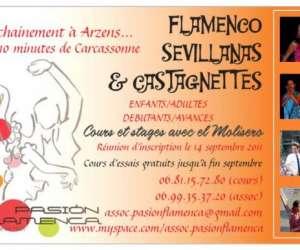 Association pasion flamenca