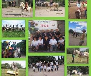 Centre equestre tipi jo