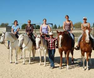 The only farm western horse pension