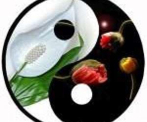 Centre yin yang