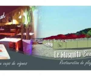 Le mosquito beach