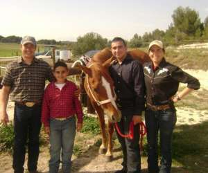 Western  horse centre equitation western