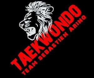 Taekwondo et hapkido, self défense
