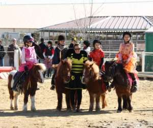 Poney club   ecuries du  relais