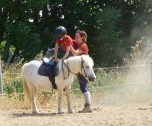 Jessie equitation