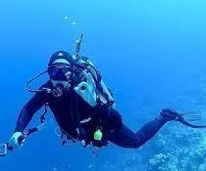 Poséidon plongée port camargue