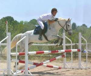 Centaure equitation