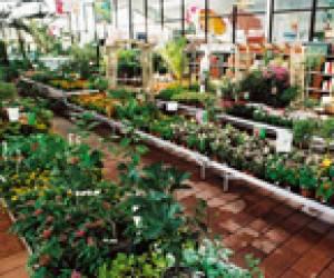 Tridôme jardinerie
