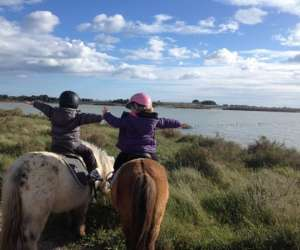 Poney club des salines