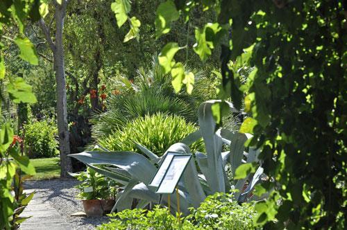 Jardin aux plantes parfumees la bouichere limoux 11300 for Plantes et jardins avis