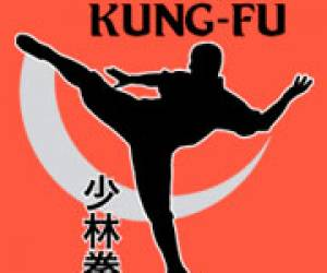 Narbonne kung fu