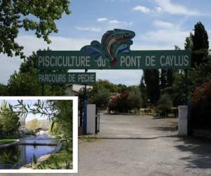 Pisciculture du pont de caylus