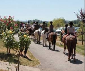 Centre equestre de thionville cattenom