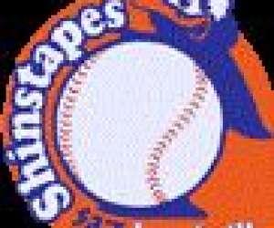 Luneville baseball & softball association (lbsa)