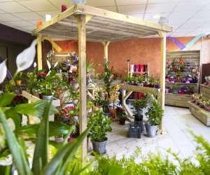 Vente de fleurs, plantes et accessoires