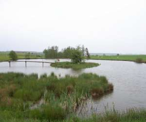 Les 4 étangs, pêche truites, carpes et brochets dans le