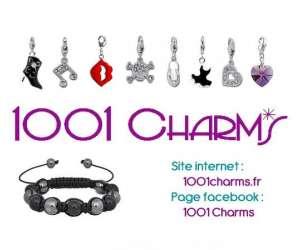 1001 charms