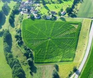 Labyrinthe de maïs de montmédy