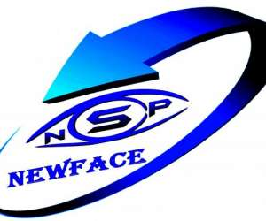 Newface securite privee nsp sas