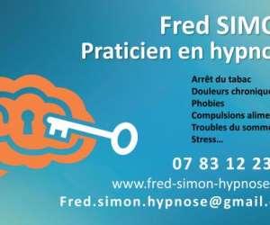 Frédéric simon